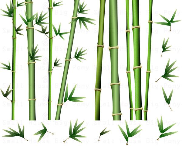 Bamboo Clipart Pack: bamboo Clip Art, short and tall bamboo Clip.