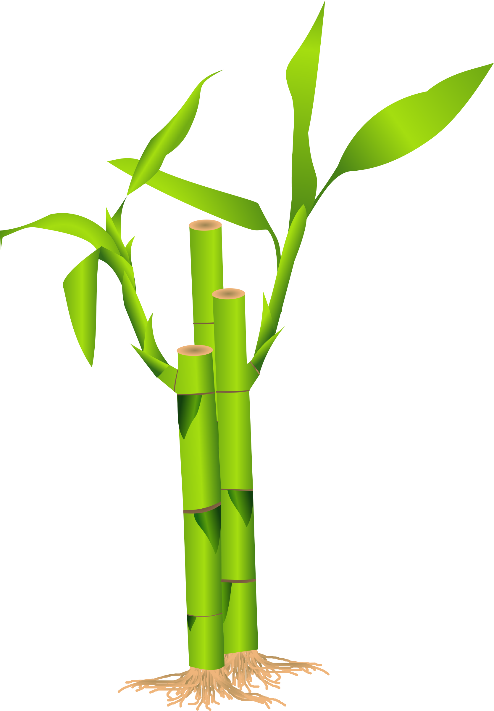 Free Bamboo Cliparts, Download Free Clip Art, Free Clip Art.