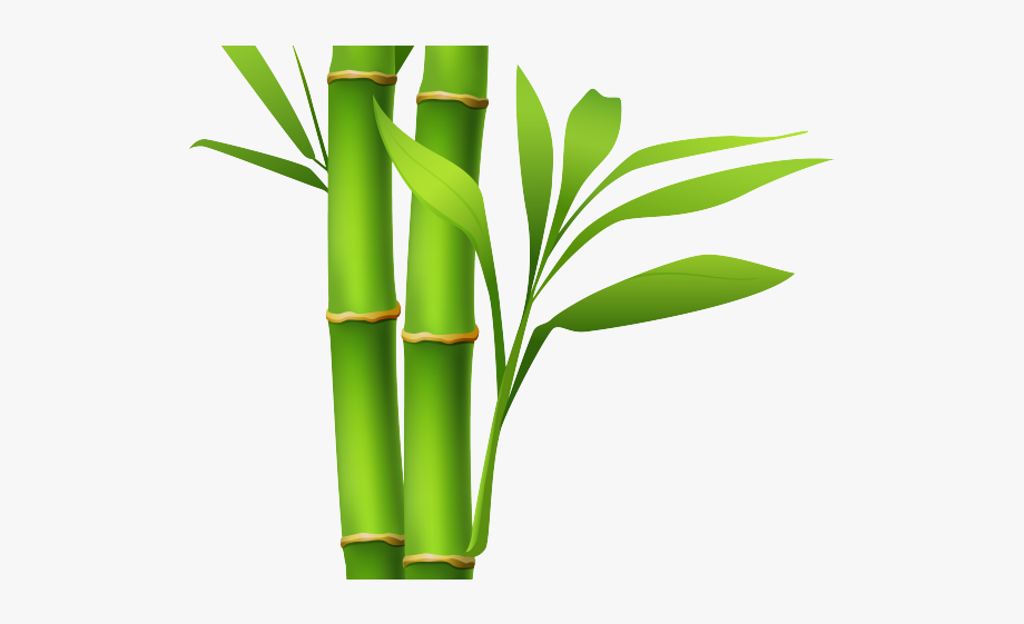 Stem Clipart Single Bamboo.