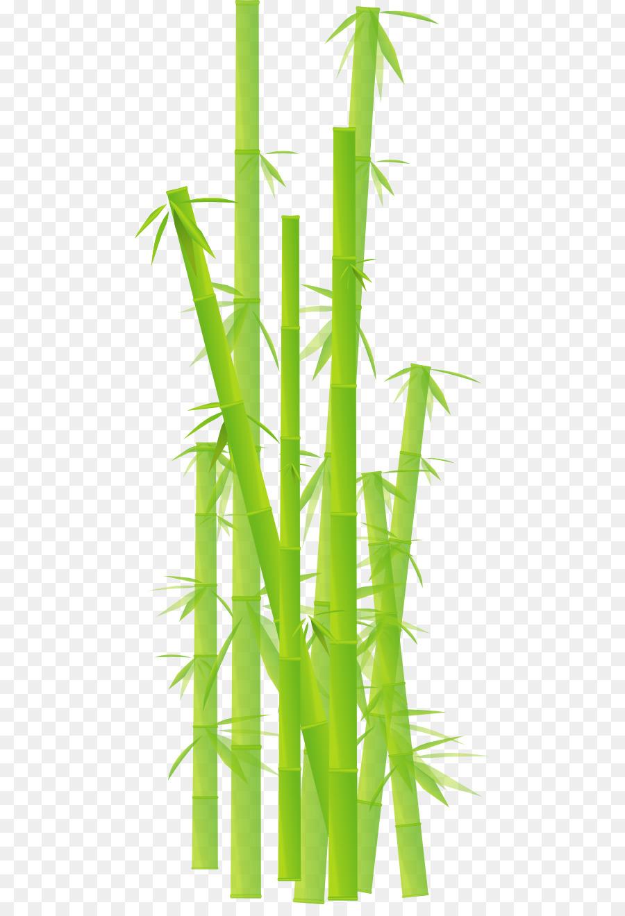 Bamboo Cartoon.