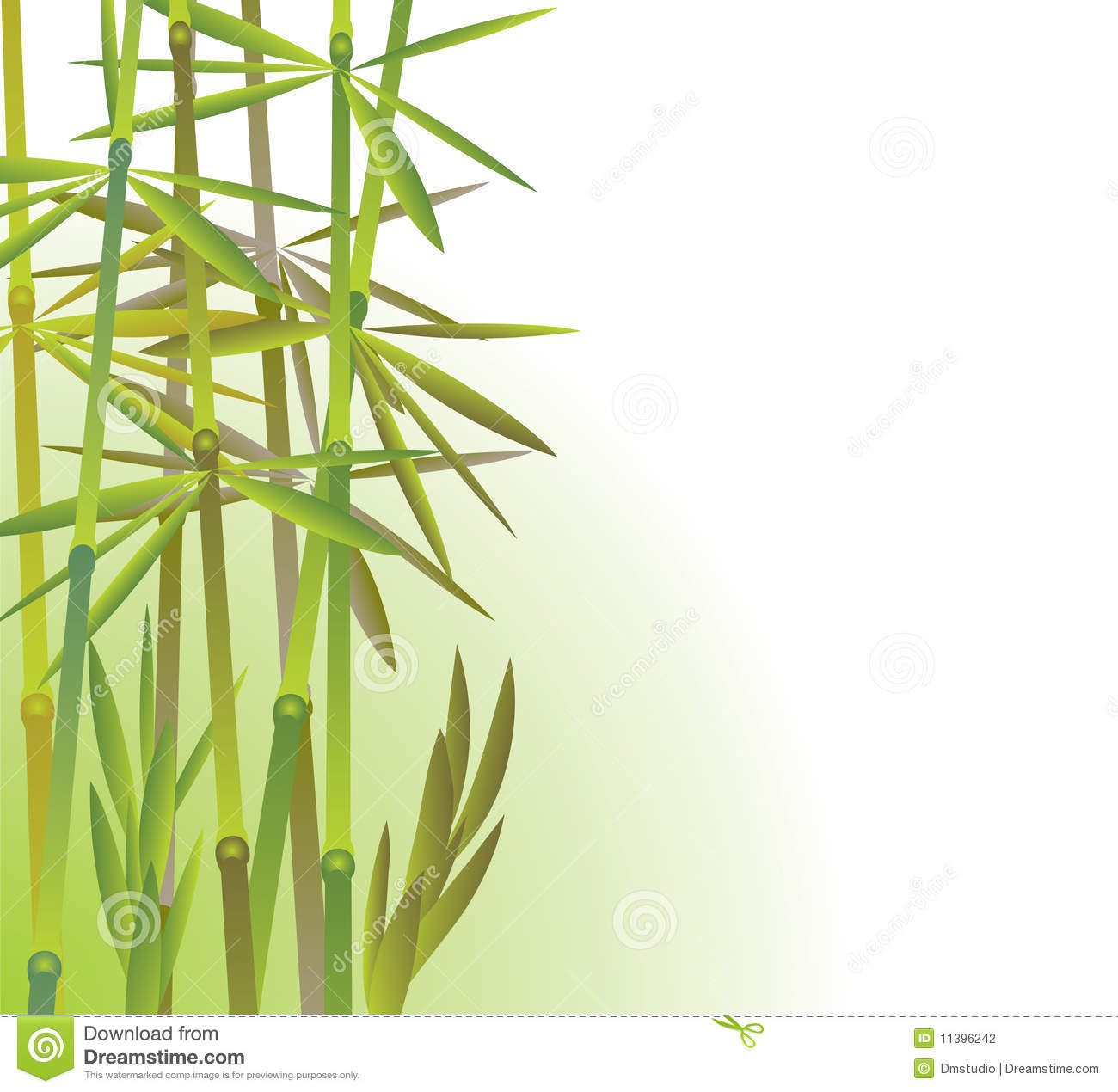 Bamboo Forest Stock Photography.