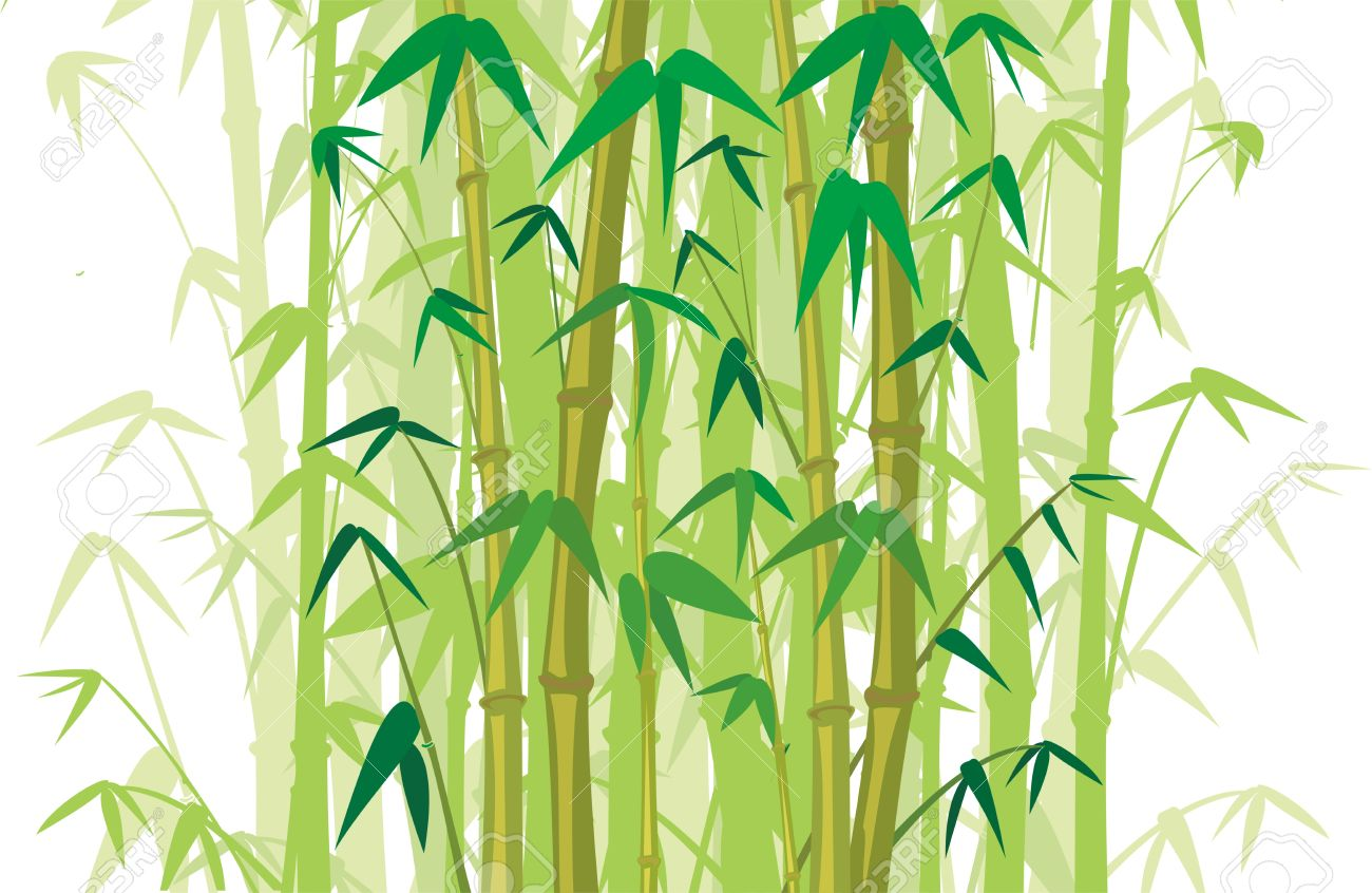Bamboo Forest Royalty Free Cliparts, Vectors, And Stock.