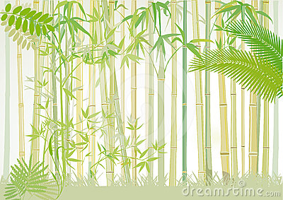 Bamboo Forest Clipart.