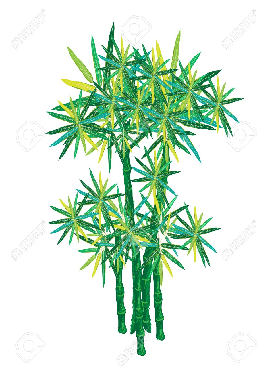 An Illustration Of Landscaping Tree Symbol Or Isometric Of Bamboo.