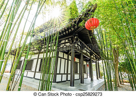 Picture of Scene of the chinese bamboo garden csp25829273.