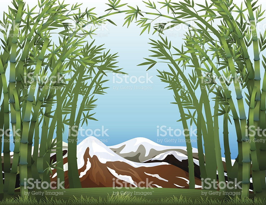 Bamboo Forest And The Snowy Mountain stock vector art 453572351.