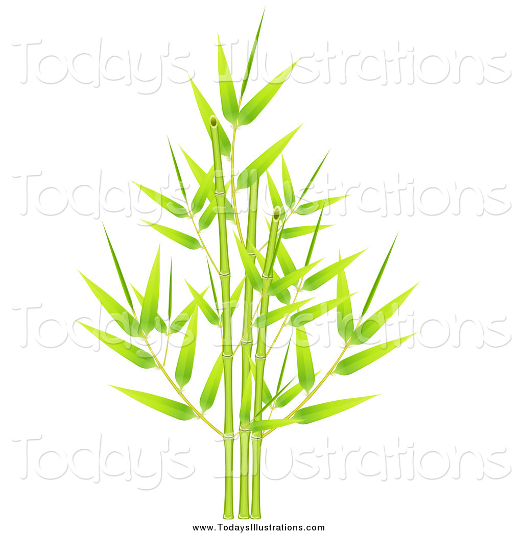 Clipart of a Green Bamboo with Fresh New Leaves and Stalks by.