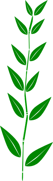Bamboo Leaves Clip Art.