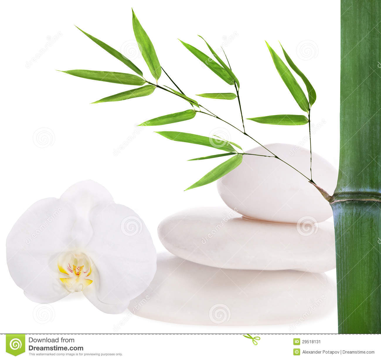 Composition With White Stones, Bamboo And Orchid Stock Image.