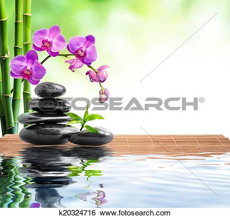 Stock Images of spa background with bamboo, orchid k20324716.