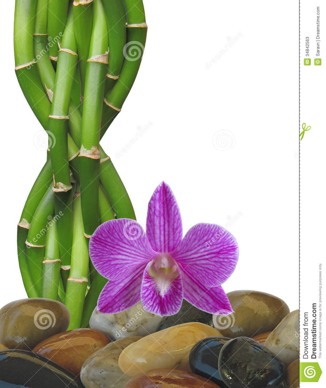 Zen Rock, Bamboo And Orchid Background Stock Photos.