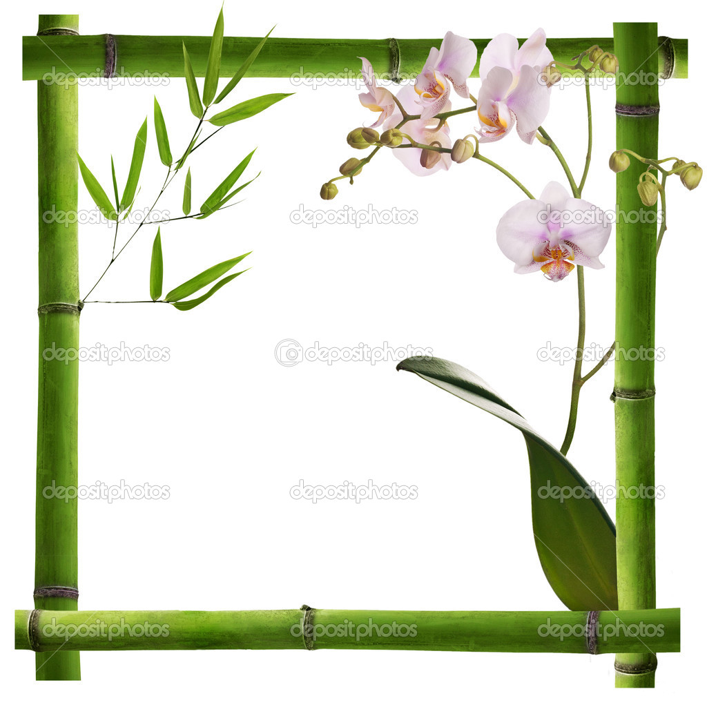 Square frame from green bamboo with orchid flowers — Stock Photo.
