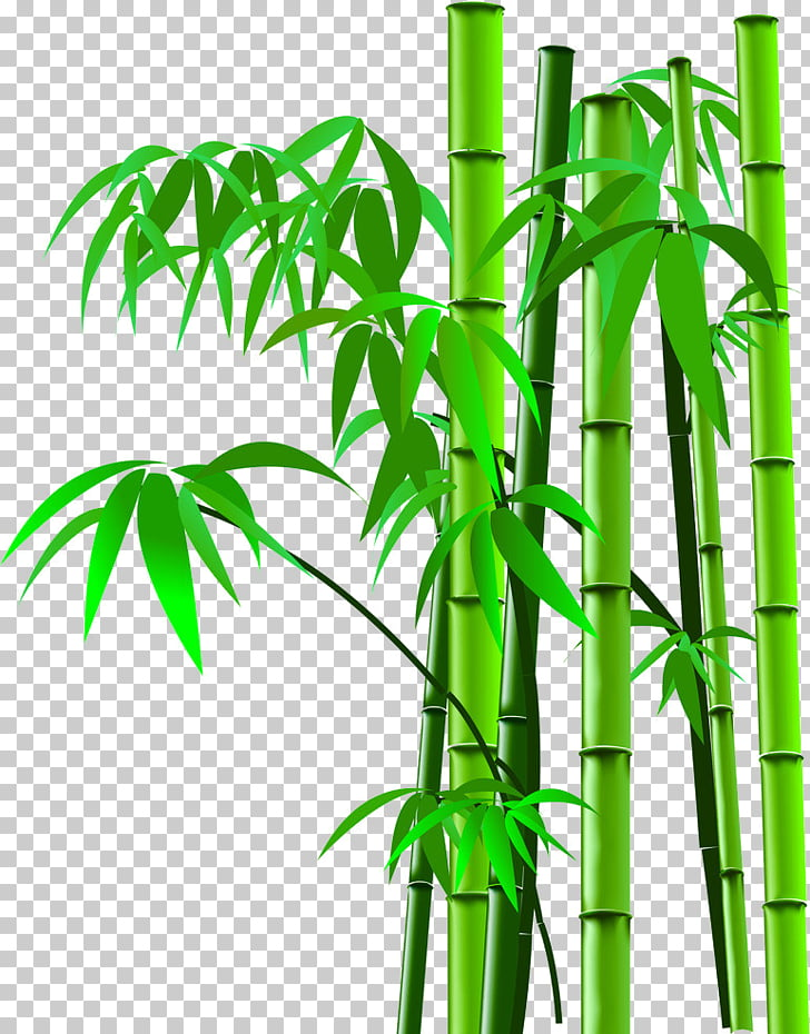 Bamboo scanner, Cartoon bamboo bamboo silhouette,bamboo.