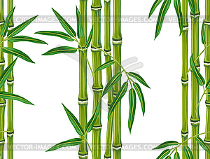 pattern with bamboo plants and leaves..