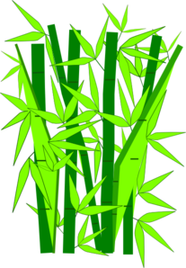 The bamboo tree clipart.