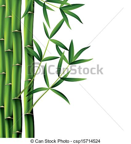 Bamboo Drawing Black And White