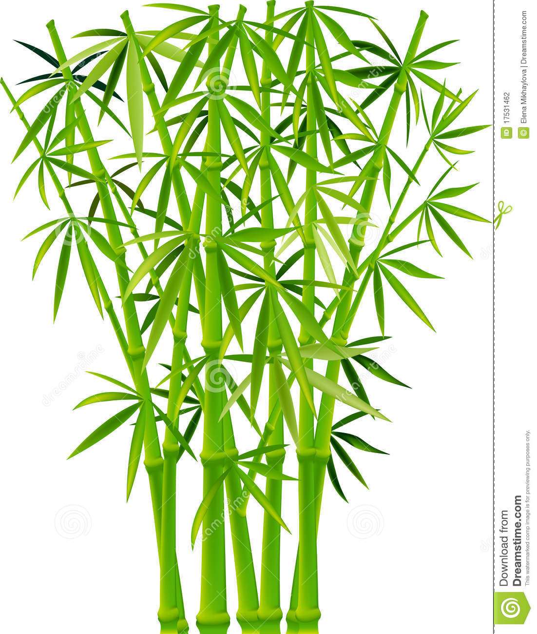 Bamboo plants clipart clipground