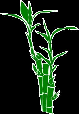 Bamboo Plant Clip Art.