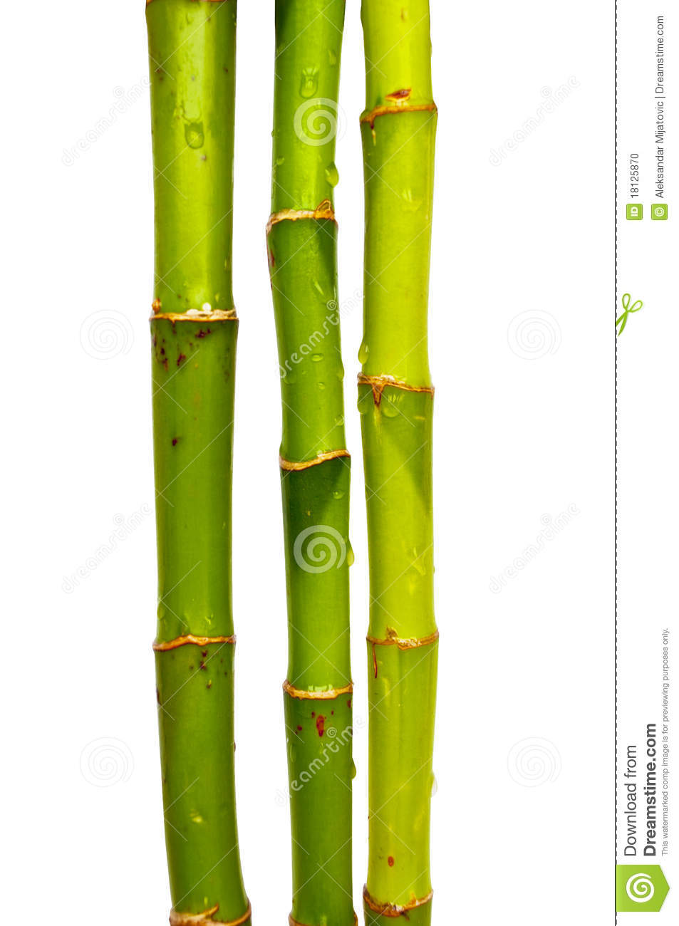 Gallery For > Bamboo Sticks Clipart.