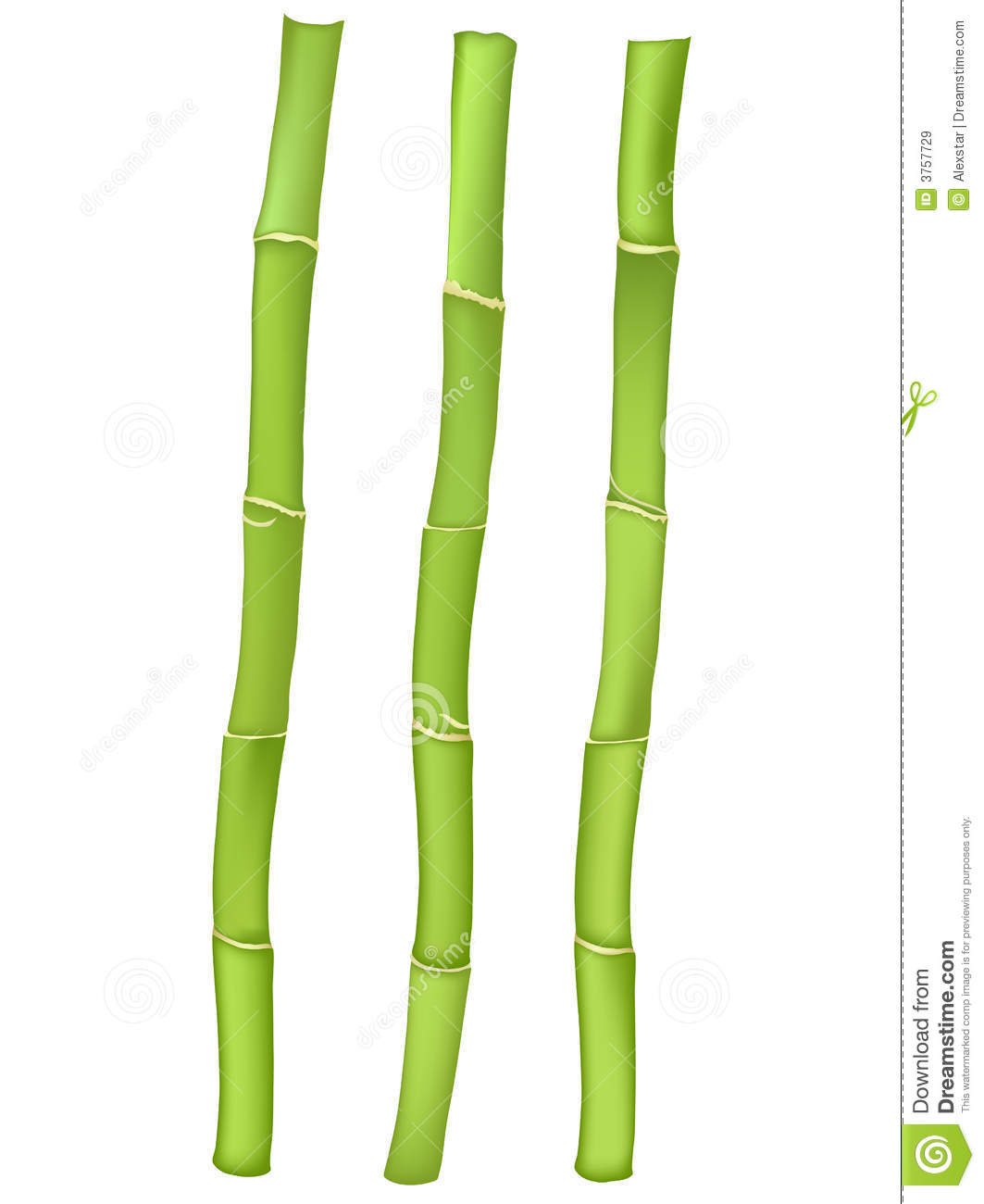 Bamboo cliparts.