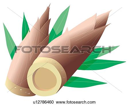 Bamboo shoots Clip Art and Stock Illustrations. 135 bamboo shoots.
