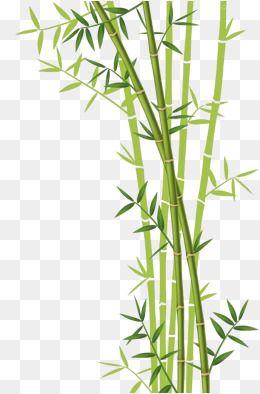 2019 的 Bamboo Download, Bamboo Clipart, Leaf, Bamboo Leaves.