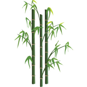 Bamboo Tree Vector.