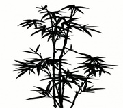 Bamboo Tree Clip Art, Vector Bamboo Tree.