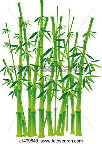 Stock Illustration of Bamboo tree k1499548.