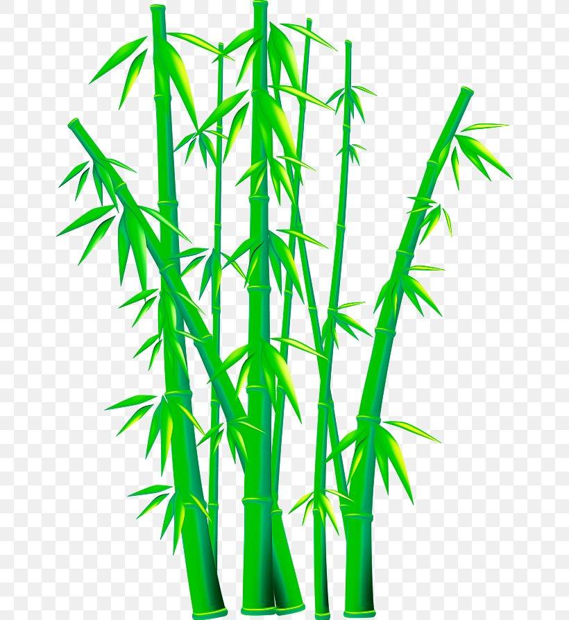 Bamboo Euclidean Vector Clip Art, PNG, 658x894px, Bamboo.