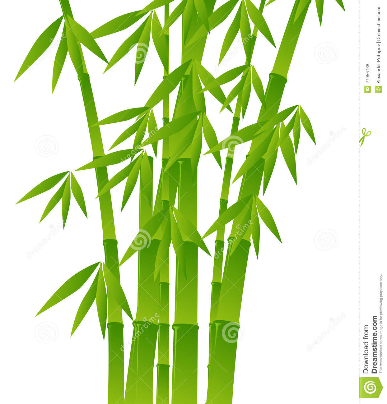 1636 Bamboo free clipart.