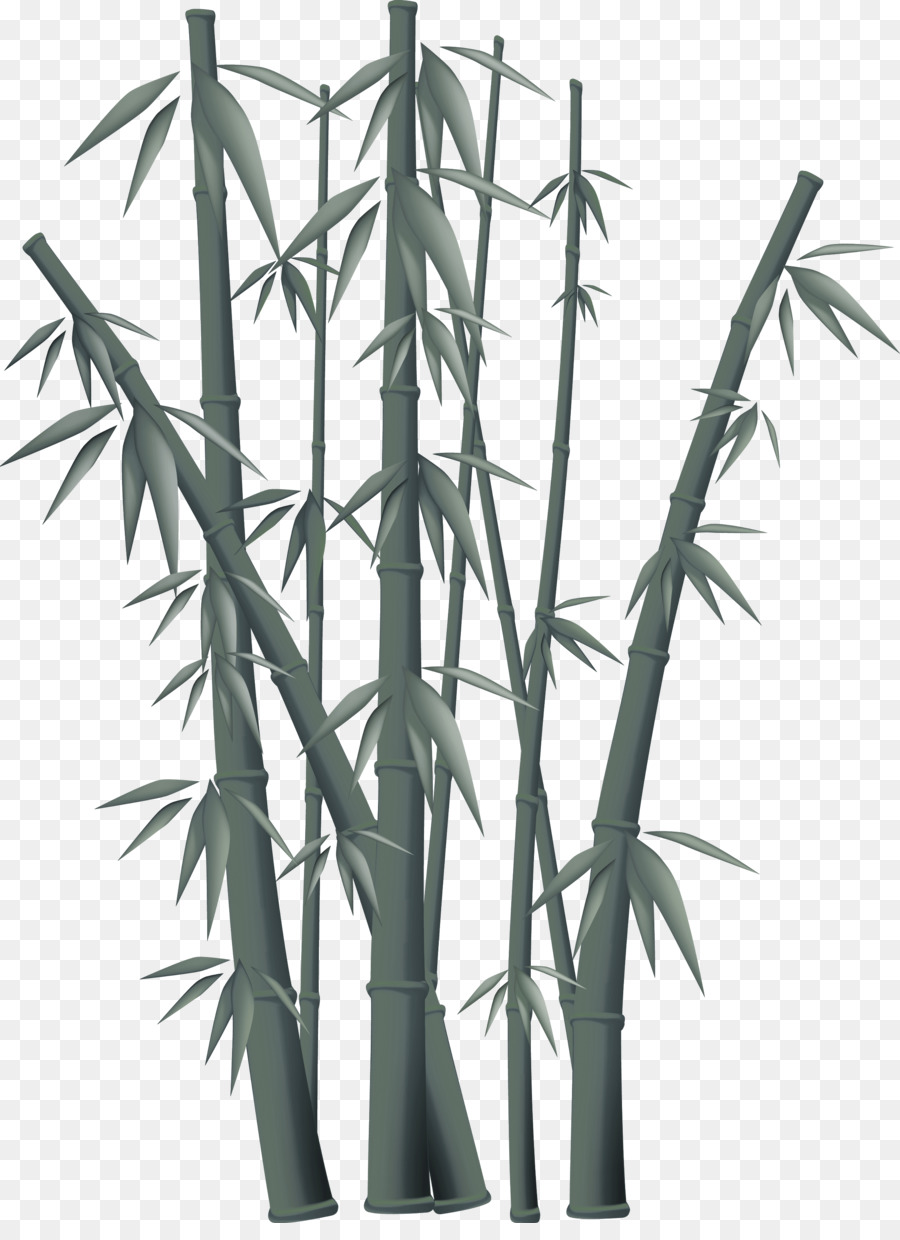 Bamboo Background clipart.