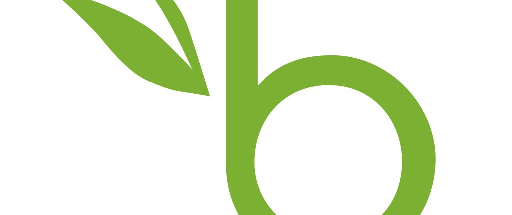 Bamboohr Logos.