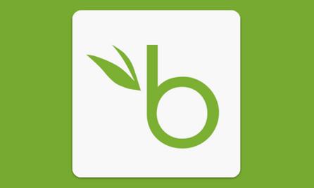 BambooHR PTO Upgrade.