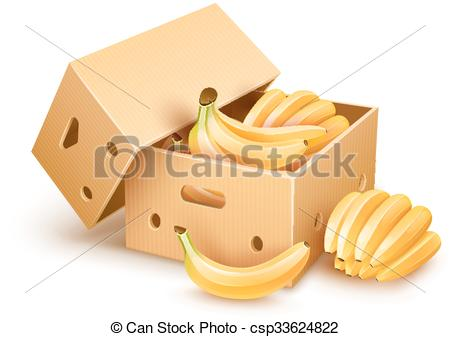 Vector Illustration of Cardboard box with banana fruits.