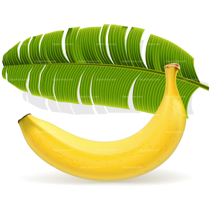 CLIPART BANANA AND LEAF.