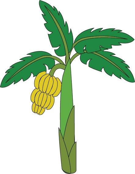 Clipart Of Banana Tree.