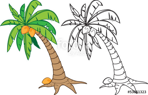 """cartoon coconut tree, in color and black n white version"""" Stock."""