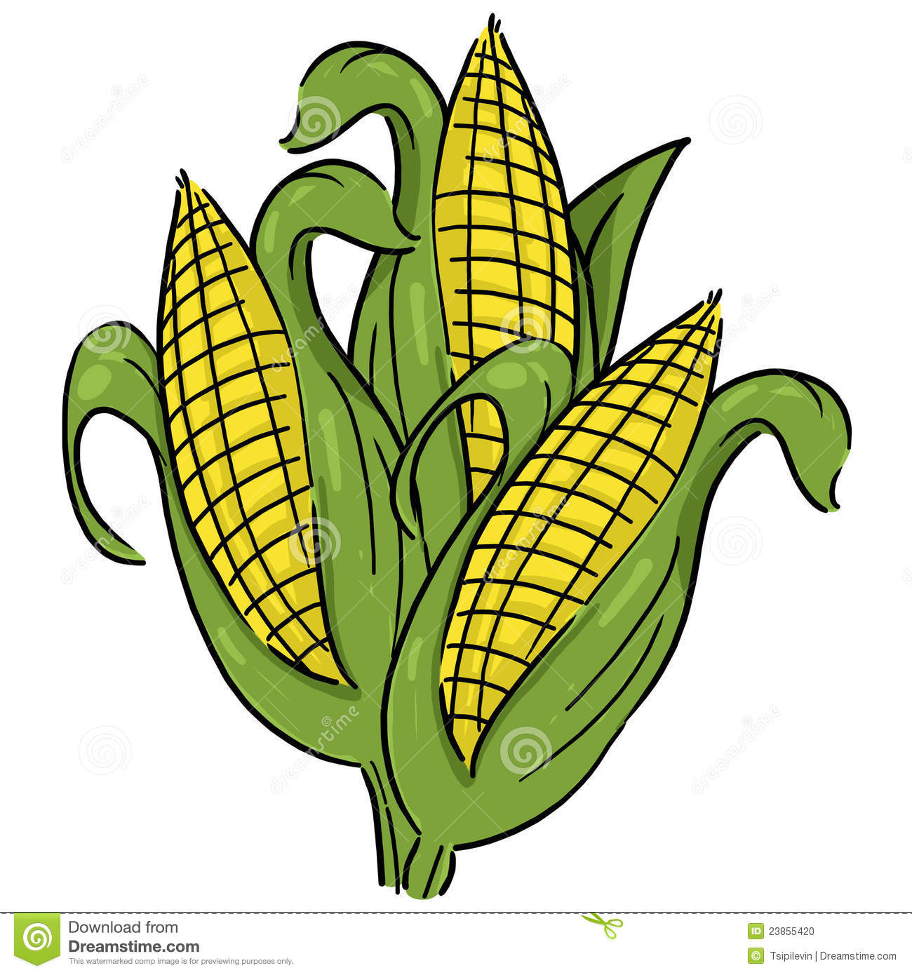 Corn Clip Art & Corn Clip Art Clip Art Images.