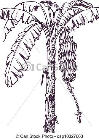 Clip Art Vector of Banana tree with banana fruit and banana flower.