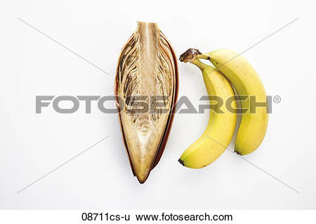 Stock Images of Banana flower and bananas 08711cs.