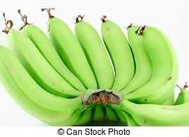 Green banana Stock Photo Images. 31,983 Green banana royalty free.
