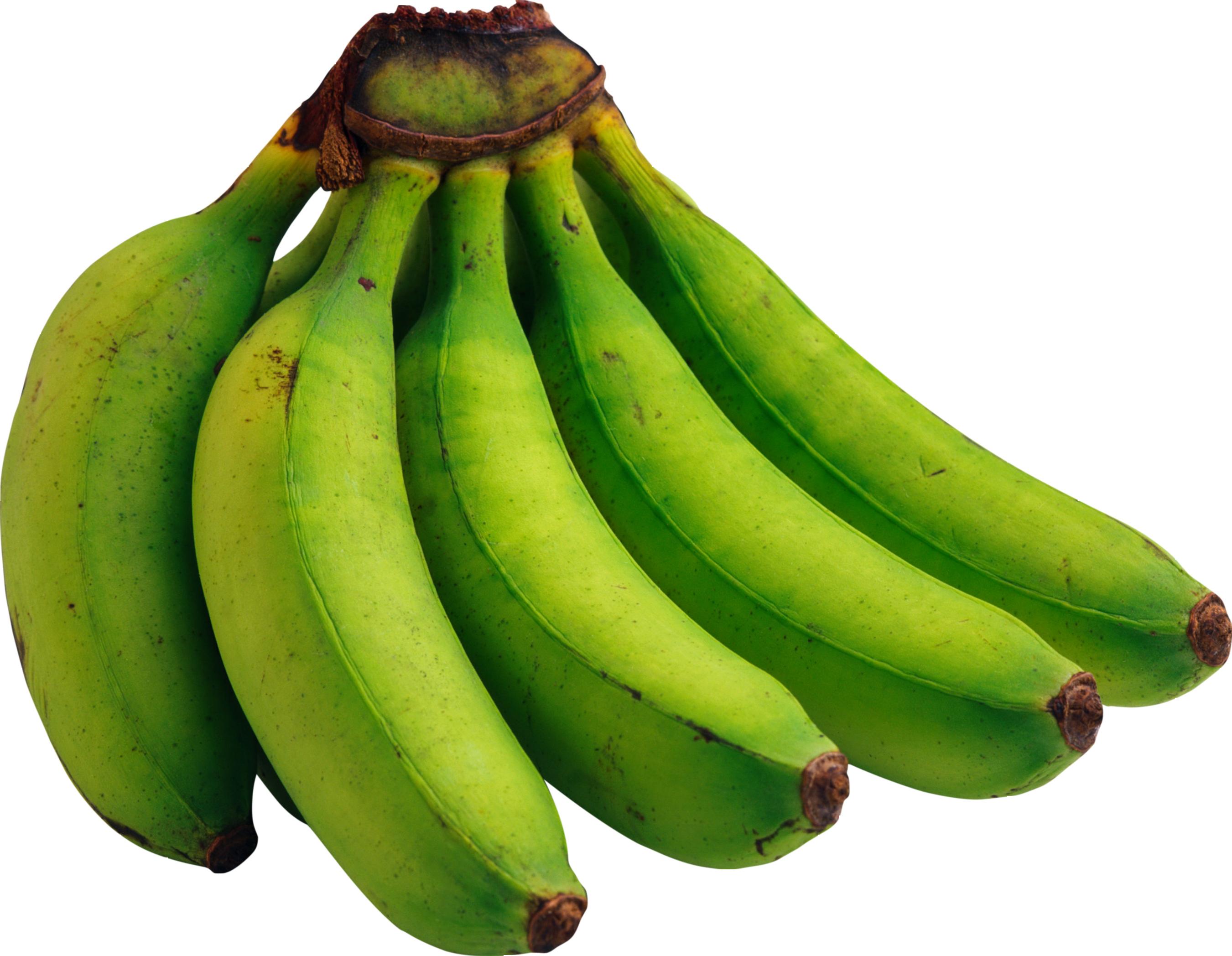 Green banana clipart.