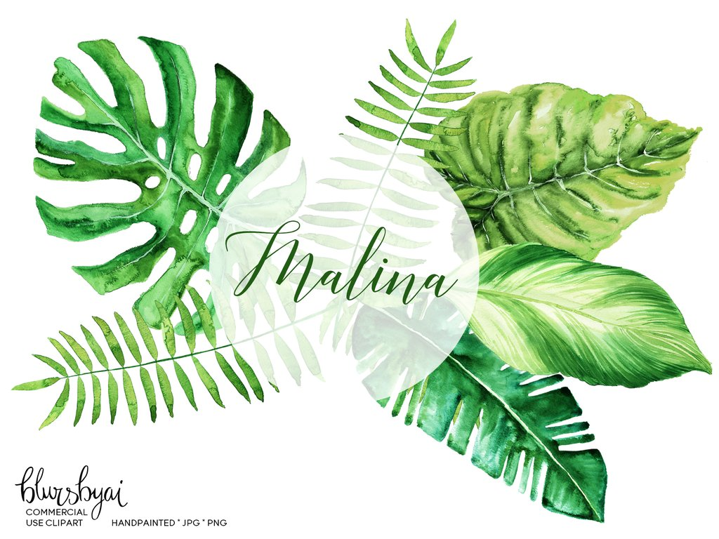 Watercolor tropical leaves clipart, monstera deliciosa, banana leaf & palm,  commercial license.