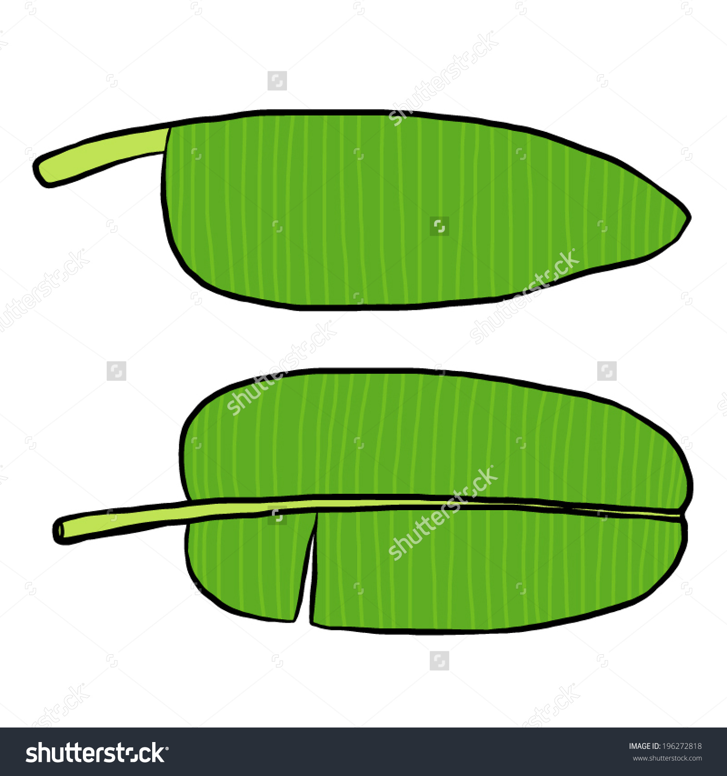 Banana leaf clipart buy.