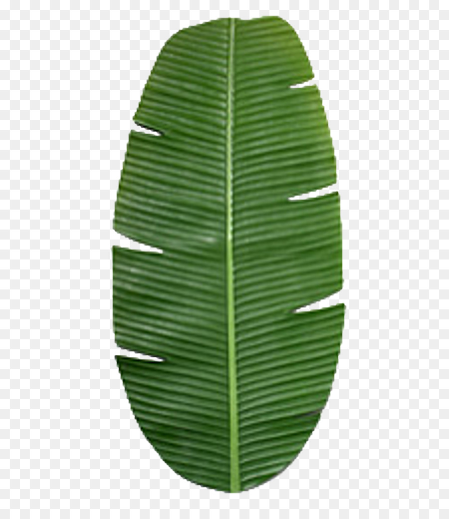 Banana Leaf Clipart png download.