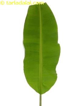 Banana Leaf Clip Art.