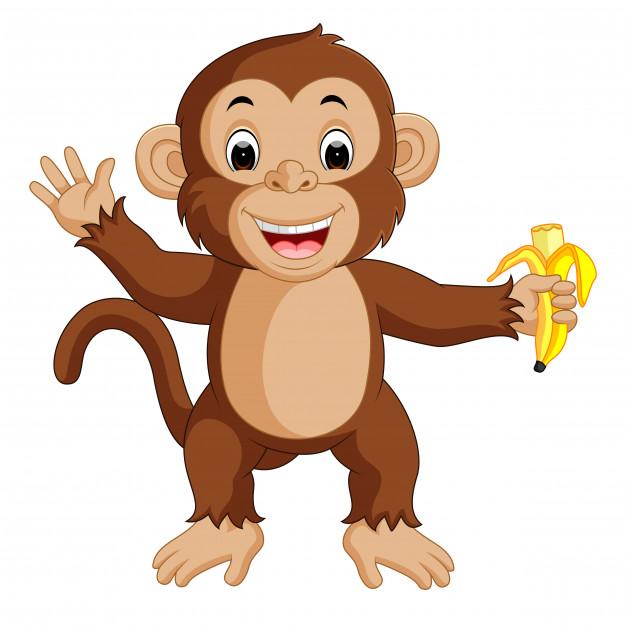 Cute monkey cartoon eating banana Vector.