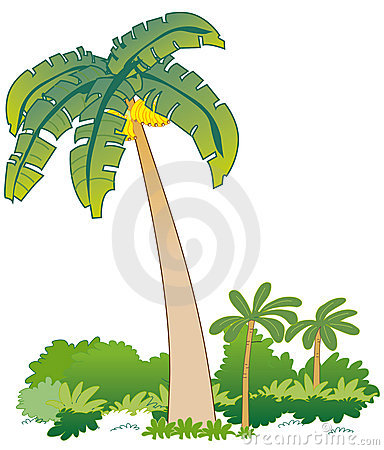 Banana Tree Clip Art Stock Photos, Images, & Pictures.