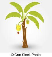 Banana tree Clip Art and Stock Illustrations. 1,714 Banana tree.